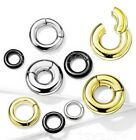 Large Gauge Hinged Clicker Segment Ring PVD Surgical Steel Earring Septum Ring image