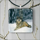 WOLF PACK LEADER IN WINTER PENDANT NECKLACE 3 SIZES CHOICE -urh7X