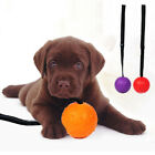 FM_ Cy_ GT- Cute Rubber Ball Strap Rope Dog Cleaning Teeth Pet Chewing Bite Trai