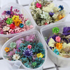 6g Dried Flower Candle Epoxy Resin Pendant Necklace Jewelry Making Art Filling