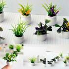 Small Air Plant And Plant Pot Terracotta Clay Pot 3cm - Mini Desk Plant Gifts Ho