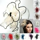 FLOWER HEADBAND HAIR ACCESSORY GIRLS HAIR BAND CLIP HAT