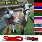 GOAT HEADCOLLAR with MATCHING LEAD, TRADITIONAL BUCKLE, 10 COLOURS. NEW!