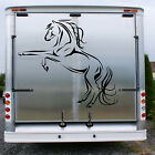 PRETTY GALLOPING HORSE Sticker Trailer Stable Transfer Horse Box Showjumping