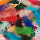 10 grams TURKEY MARABOU FLAT TOP  FEATHERS -  CHOOSE YOUR COLOUR  ** feathers **