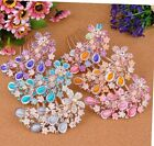 Jewelry Bouquet Flower Gorgeous bridal Rhinestone Crystal Hair Comb Pin Clip Gem