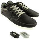 Mens Etnies Dory Lace Up Casual Canvas Casual Trainers Skate Shoes UK Sizes 7-12