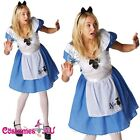 Ladies Alice in Wonderland Disney Fairytale Halloween Fancy Dress Adult Costume