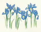 Heritage Crafts Irises Counted Cross Stitch Kit