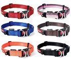 EZY-DOG DOUBLE UP COLLAR FOR ADDED STRENGTH AND DURABILITY