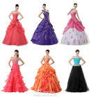 Faironly Womens Long Evening Dress Formal Prom Dress Custom Made Plus Size +++