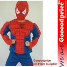 Spiderman Child Costume with muscle chest hat+shirt+trouser 3pieces Polyester