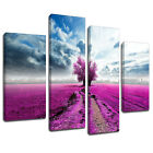 MSC358 Lilac Grass Field Canvas Wall Art Multi Panel Split Picture Print