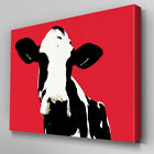 A019 Black White Cow Face Red Canvas Art Ready to Hang Picture Print