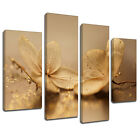 MFL409 Two Orchids Gold Dust Canvas Wall Art Multi Panel Split Picture Print