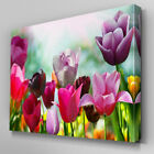 FL235 Field of Tulips Floral Canvas Wall Art Ready to Hang Picture Print