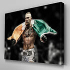 S553 Conor McGregor Victorious KO UFC 189 Canvas Art Framed Poster Picture Print