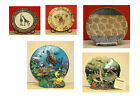 Elephant, Giraffe, And Sealife Wildlife Decorator Plates