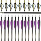 "12pcs Archery Carbon Arrows 31"" Hunting Broadheads 100Gr Field Tips Recurve Bow"