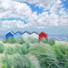 '5 Beach Huts' painting by Julia Pankhurst in print/canvas sizes