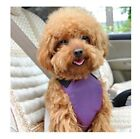 Dual Use Dog Harness And A Safety Seat Belt Leash Purple