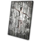 Shabby Chic Ballerina Performing SINGLE CANVAS WALL ART Picture Print