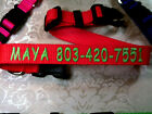 """Personalized Custom Embroidered ,,Adjustable Dog Collars 1"""" , 3/4"""", 5/8"""" Wide"""