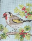 CHRISTMAS BERRY BIRD study tapestry  20 X 25CM CANVAS ONLY OR KIT - YOUR CHOICE!