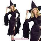 Women's carnival costume dress STREGA suit costume Halloween DL-1948