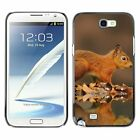 Hard Phone Case Cover Skin For Samsung Beasts red squirrel in fall