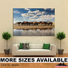 Wall Art Canvas Picture Print - Herd of Horses Drinking Water 3.2