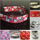 Dog Collar - Lead Optional - Spaniel Husky Pug Paw Dachshund Scottie Dog & name