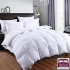 DICKENS DUCK FEATHER DUVET QUILT BEDDING LUXURY HOTEL QUALITY 13.5 TOG