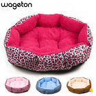 Hot sales! NEW! Colorful Leopard print Pet Cat and Dog bed, Size M/L