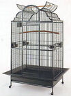 2 Color, New Large Open Dome PlayTop Wrought Iron Parrot Amazon Bird Cage 542