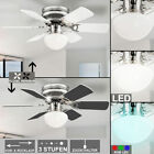 LED ceiling fan living dining room cooler RGB remote control fan lamp dimmable