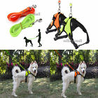 Pet Control Harness Training Walking with Leash Set For Small Large Medium Dog