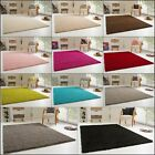 SHAGGY RUG SUMMER XL FOR LIVING ROOM DINNER ROOM SUPER SOFT AND COSY PILE