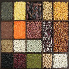 cook kidney beans - Pulses Beans Lentils Cereals General For cooking Freshly pack Indian Beverages