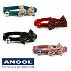 Cat Collar Vintage Bow Safety Buckle & Warning Bell Kitten Ancol - 4 Colours