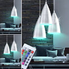 1x-2x-3x-RGB LED Pendant Lamps Kitchen Ceiling Remote Control ALU Lamps dimmable