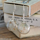 Handmade Real Dandelion Seed Glass Orb Earrings -  Sterling Silver Make a wish