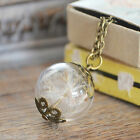 Handmade Real Dandelion Seed glass Orb Necklace Vintage Bronze Flower Jewellery
