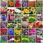 VARIETIES flower Seeds Heirloom NON-GMO Top Quality Everything you need is here