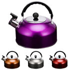 3L Whistling Kettle Stainless Steel Camping Kitchen Tea Coffee Hot Water Pot US
