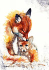 Greeting Card or Print Watercolour Foxes by Artist Be Coventry wildlife art
