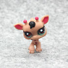 24 Style Littlest Pet Shop Brown Cat Dogs Big Eyes LPS Accessories Toys Gifts