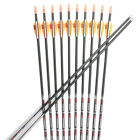 Victory VAP V3 ID4.2 30'' SP350/400 Pure Carbon Arrow Shaft Archery for Hunting