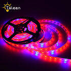 5050 LED Strip Grow Light 5Red:1Blue Wide Spectrum Plant Lamp For Greenhouse 01