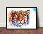 NEW, Tiger,Sale,Original ,Watercolour,Print ,Card, Gift,Wildlife,Animal,Art,